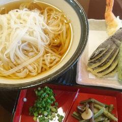 稲庭天ぷらうどん